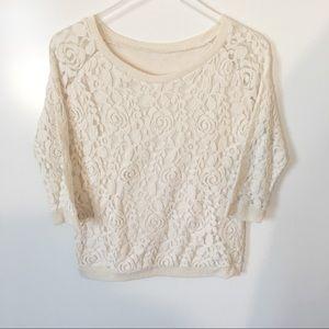 Sweaters - Cream Rose Lace Lightweight Sweater